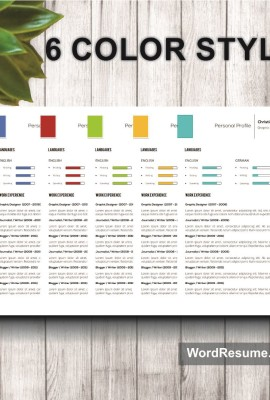 Mockup Template Resume 10 6 color styles