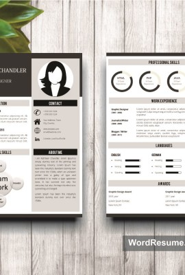Mockup Template Resume 13 1st and 2nd page