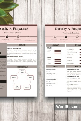 Resume Template Mockup 17 page 1 and 2