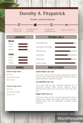 Resume Template Mockup 17 page 2