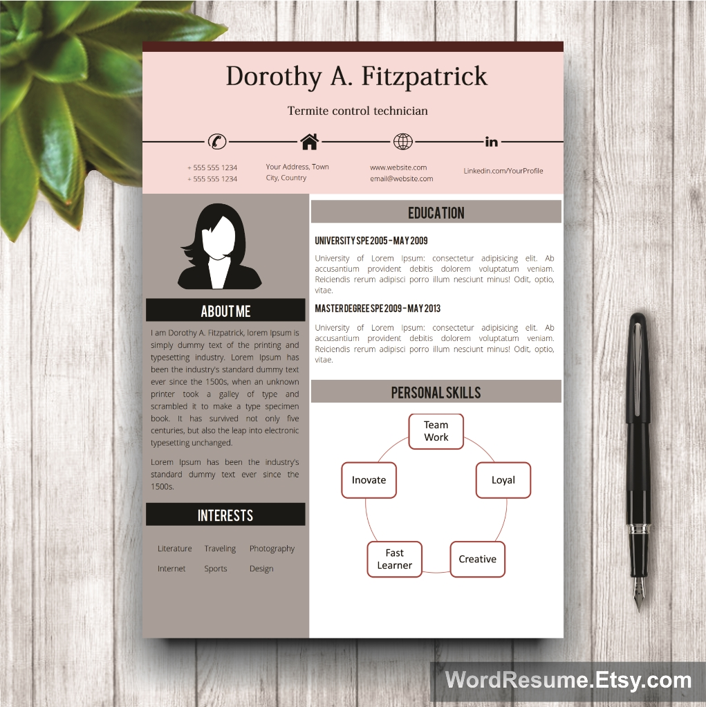 Word Template For Resume Images Modern Microsoft  MediareadyincCom