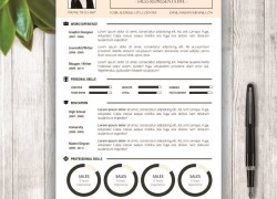 "CV Template + Cover Letter – ""Gloria P. Terry"""