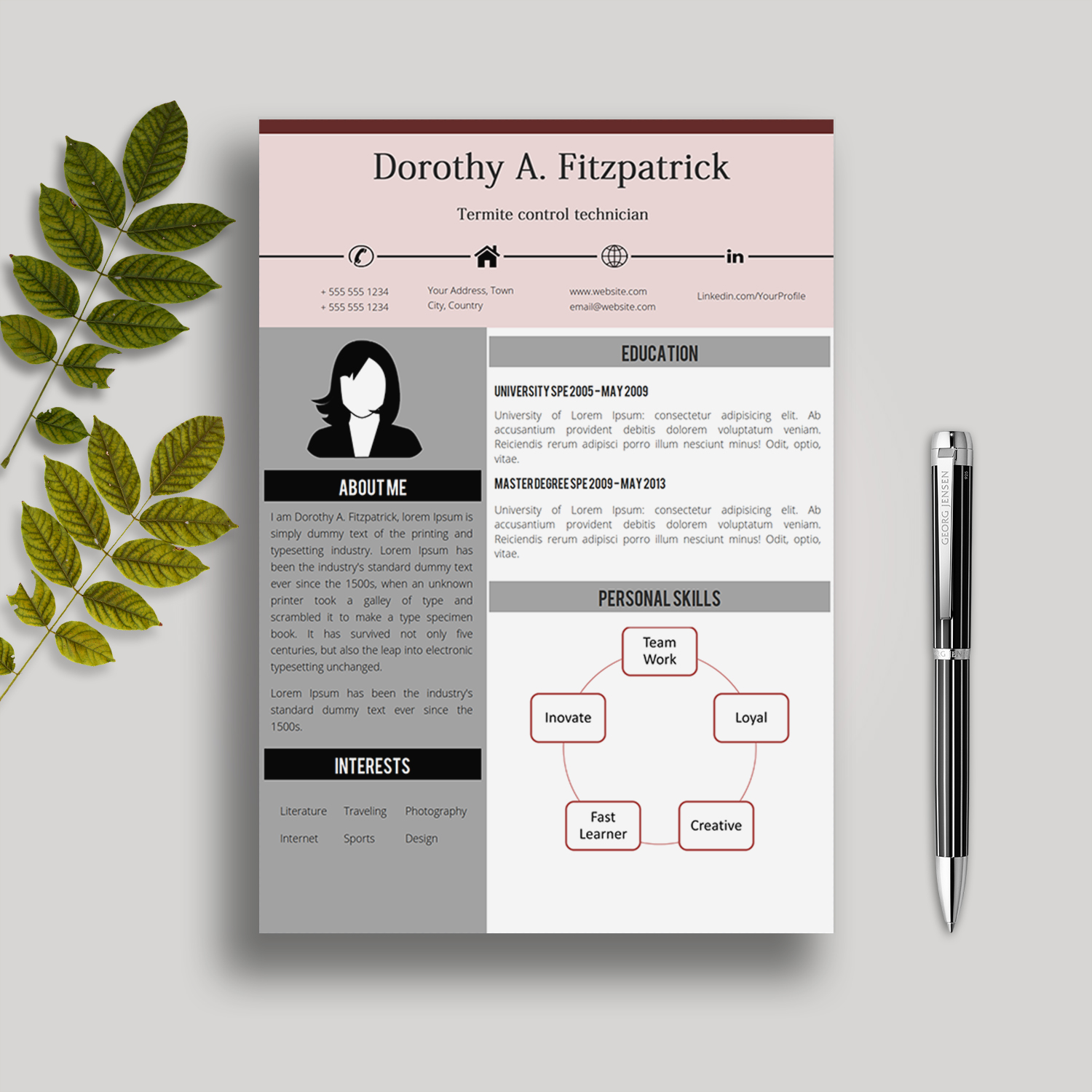 Creative Cv Template In Ms Word Dorothy Creative Resume Templates